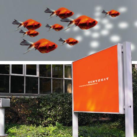 Vom Entwurf bis zum SEO – bei der Düsseldorfer Werbeagentur herrscht Miteinander